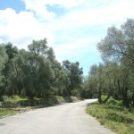 valdanos-ulqin