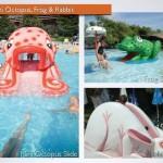 Akva park, Mini Octopus