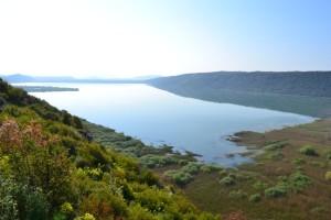 Liqeni i Shasit, Sasko jezero