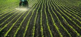 Ministria e bujqësisë: TË ENJTEN PREZANTIMI I AGROBUXHETIT