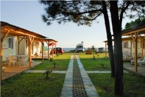 Auto kamp Safari beach