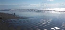 Të mirat detare: PLAZHET DO TË JEPEN NË PERIUDHËN PESË VJEÇARE