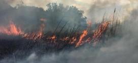 Zjarre të reja: FLAKË NË SHTOJ DHE RRETHINË