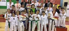 Taekwondo: 9 MEDALJE TË ARTA PËR ULQININ