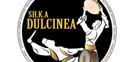 Folklor: SHKA DULCINEA NE FESTIVALIN INTERNACIONAL NE RUMUNI