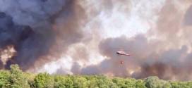 Zjarri në Shqipëri: ERA LINDORE NË FORCIM, VIJON NATA PA GJUMË