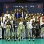 Taekwondo Ulqin