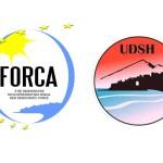 Koalicioni parazgjedhor Forca – UDSH: UNIONI KËRKON 4 NË 10 TË PARËT