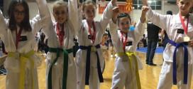 """Taekwondo Ulqin: 6 TË ARTA NË """"SKOPJE OPEN"""""""
