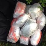 Në Zenelaj: GJENDET ÇANTA ME 20 KILOGRAM DROGË