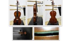 Violina 1