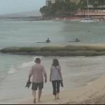 Pendët nga thasët me rërë të vendosura në plazhin Waikiki në Hawaii