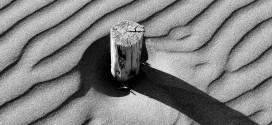 Konkursi i fotografisë artistike: SHPËRBLEHET MOTIVI NGA PLAZHI I MADH